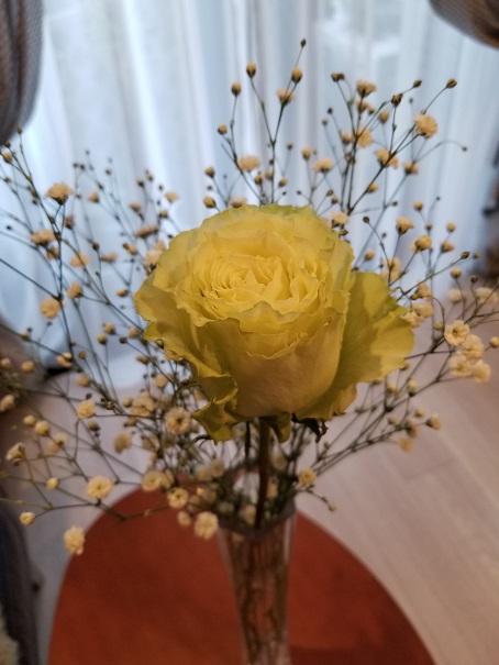 美しい花のように